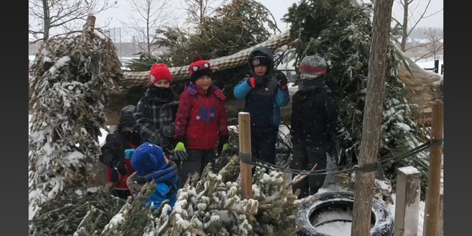 Photo of kindergarten students playing outside with Christmas trees.