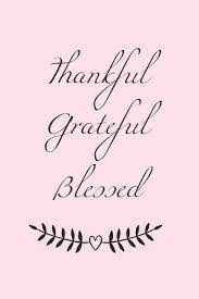 Thankful Grateful Blessed: 365 days Gratitude Journal, Reflection, Thankful  for notebook, 3 things to be grateful for, amazing things that happened,  today's challenge, gratitude book for women, girl, daughters, teens:  Happiness Your